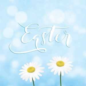 Happy Easter greeting card, invitation with handwritten text, daisy or marguerite flowers and blue sky. Modern blurred spring background with bokeh lights. Vector illustrations.
