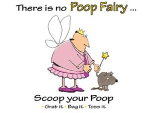 Poop-fairy